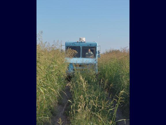 tallgrass68071